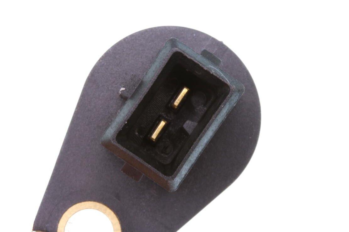 Volkswagen Jetta Vehicle Speed Sensor Replacement (Beck