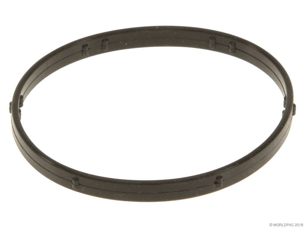 Lincoln ls engine coolant thermostat gasket replacement felpro 2003 lincoln ls engine coolant thermostat gasket 8 cyl 39l victor reinz w0133 1707247 o ring seal publicscrutiny Choice Image